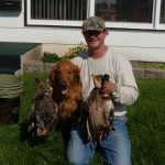 guided South Dakota pheasant hunting